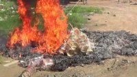 সুনামগঞ্জে ভ্রাম্যমাণ আদালতের অভিযানে ৮ হাজার প্লাস্টিক গুই আটক