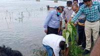 মুজিববর্ষে তাহিরপুরে বৃক্ষরোপণ করলেন পানি সম্পদ সচিব