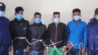 জগন্নাথপুরে ১৫টি গরু উদ্ধার : চোর সিন্ডিকেটের ৪ সক্রিয় সদস্য আটক