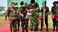 সেনাবাহিনীর বৃক্ষরোপণ অভিযান : সিলেটে লাগানো হবে ২৫ হাজার গাছ